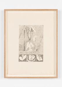 Mimi Lauter, 'Pizzicato', 2019