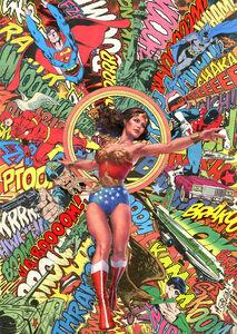 Mr Garcin, 'Wonder Woman', 2016