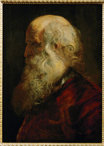 Peter Paul Rubens, 'Study of an Old Man', ca. 1610