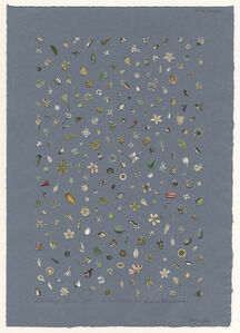 Billy Renkl, 'Saturday, February 6, 1841: nature strews her flowers broadcast', 2012