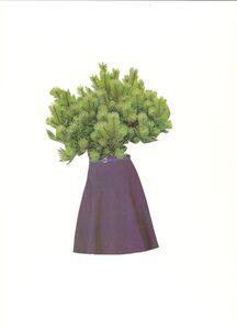 Marco Rountree, 'Faldas y plantas', 2014