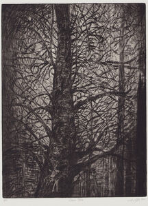 Ulrike Theusner, 'Ghost Tree', 2020