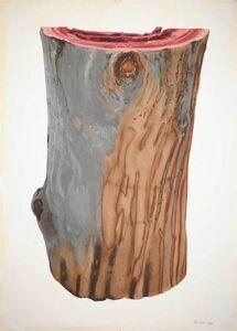 Ray Cicin, 'Bark, Skin, Guanciale'