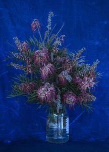 Itamar Freed, 'Flowers', 2017
