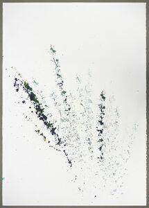 Maria Thereza Alves, 'Unrejected wild flora ', 2017