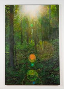 Paul Jacobsen, 'Untitled (Singularity Shadows)', 2012