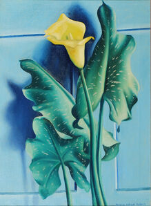 Clarence Holbrook Carter, 'Yellow Calla Lily', 1931