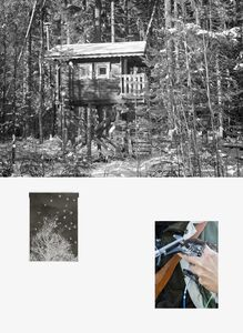 Sanna Kannisto, 'Forest hide-out, negative, spotted nutcracker being ringed', 2019