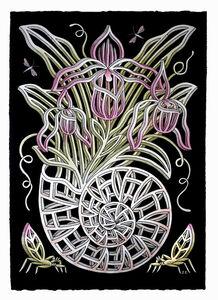 Jayde Cardinalli, 'The Nautilina Orchid', 2018