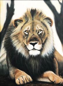 Kalipeinture, 'Lion d'Afrique', 2019