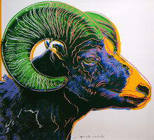Andy Warhol, 'Big Horn Ram, from Endangered Species', 1983