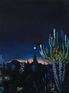 Adele Gilani, 'Desert Moon', 2018