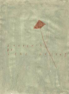 Arpaïs Du Bois, 'souvenir de cerf-volant', 2019