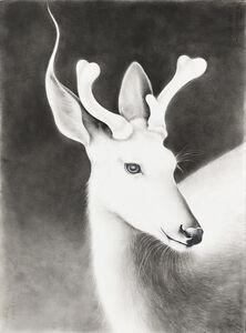 Amy Ross, 'Buck'