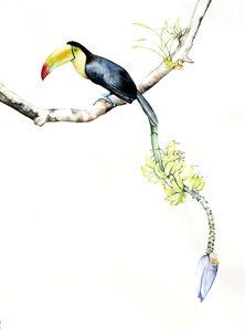 Amy Ross, 'Bird of Paradise 3', 2015