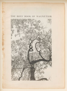 Colter Jacobsen, 'The Boys' Book of Magnetism', 2011