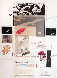 Cy Twombly, 'Natural History Part 1 Mushrooms n. X', 1974