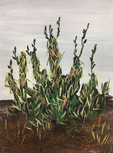 Erika Duque, 'Plant from San Diego', 2016