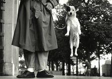 Paris, France (Dog Jumping)
