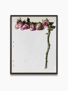 Res, 'Erik's Roses', 2020