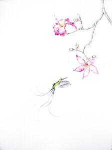 Amy Ross, 'Bird of Paradise 12', 2015
