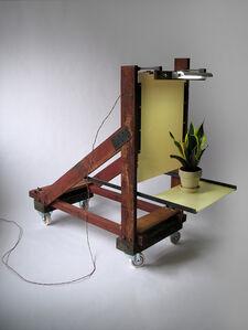 Joseph Burwell, 'Sacrificial Office Plant', 2013