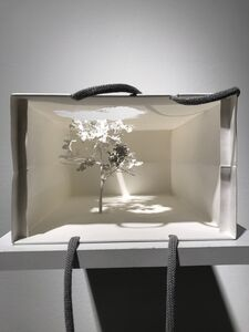 Yuken Teruya, 'Notice Forest', 2017