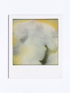Johannes Wohnseifer, 'Polaroid Painting (small)', 2019