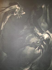 Gary Schneider, 'Rose 1989', 2001