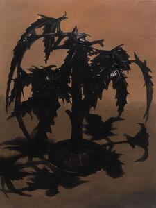Zhan Chong, 'Tree', 2019