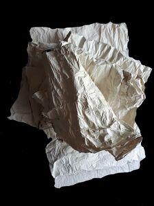 Bea Last, 'Small Shroud in white', 2020