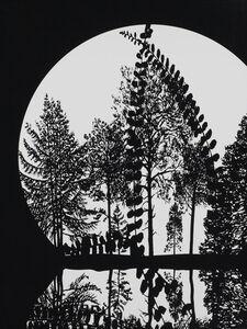 Paul Morrison, 'Untitled 07 from Calathidium', 2006
