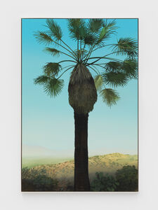 Jake Longstreth, 'In Glendale (Palm 3) ', 2020