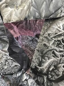 Sandeep Mukherjee, 'Untitled (Molting the Fractured)', 2017