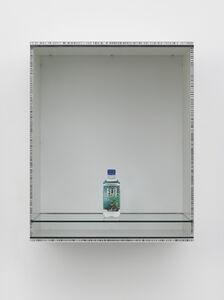 Haim Steinbach, 'Untitled (Fiji)', 2013