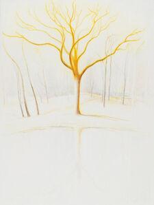 Ron Milewicz, 'White Oak', 2019