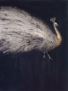 Walid El Masri, 'Peacock 1', 2018