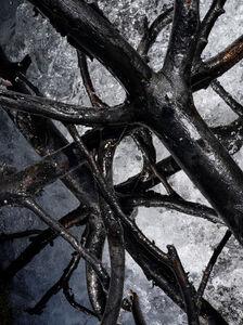 Hrafnkell Sigurdsson, 'Stilling/Modulation', 2020