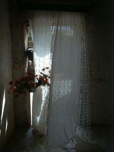 Mohamed Camara, 'Chambres Maliennes, Ma cousine Sounaba me tend des fleurs', 2002