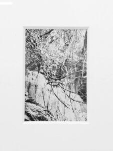 thomas vandenberghe, 'Untitled', 2019