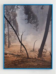 Julius von Bismarck, 'Fire with Fire', 2019