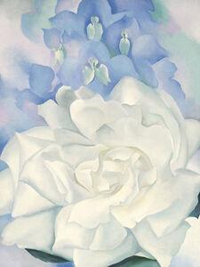 Georgia O'Keeffe, 'White Rose with Larkspur No. 2', 1927