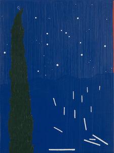 Mariana Serri, 'Cipreste at Night', 2019