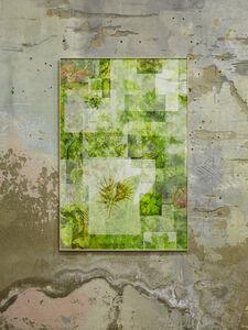 Mathieu Merlet Briand, '#Tree-Leaf', 2018