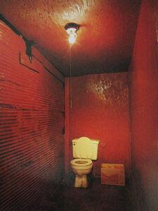 Birney Imes, 'The Skin Man Place, Belzoni', 1986