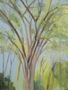Sylvia Plimack Mangold, 'The Elm Tree (Summer)', 1993