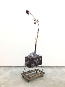 Jesse Krimes, 'Of Beauty and Decay; or, not (purple)', 2018