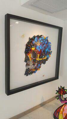 SN: Butterfly Skull, installation view