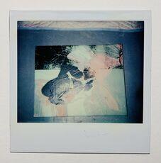 Untitled (Skull painting polaroid)