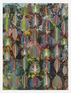 Philip Taaffe, 'Interzonal Leaves', 2018